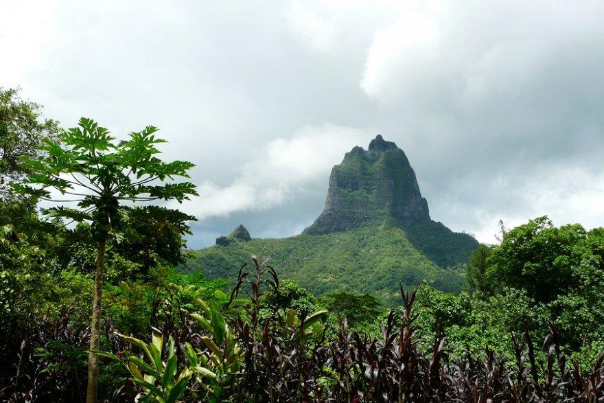 Moorea höchster Berg Inselinneres