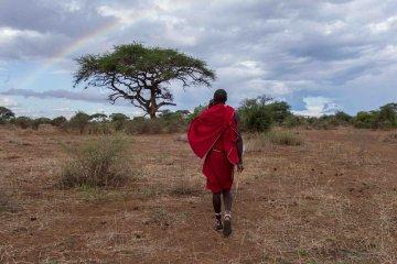 Tansania aktiv erleben